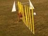 50-agilitytraining-03_03