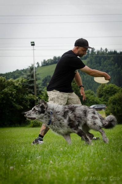 discdog-24