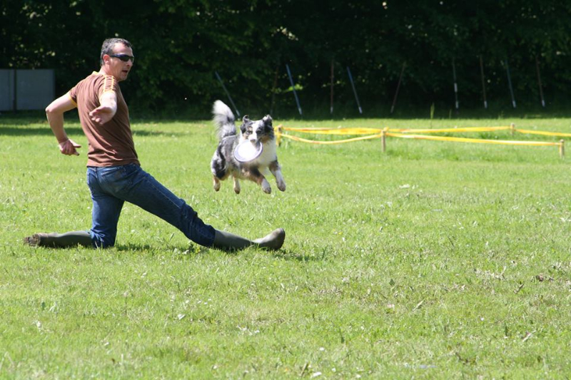 discdog-seminar-juni-2013-013
