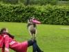 discdog-seminar-juni-2013-008
