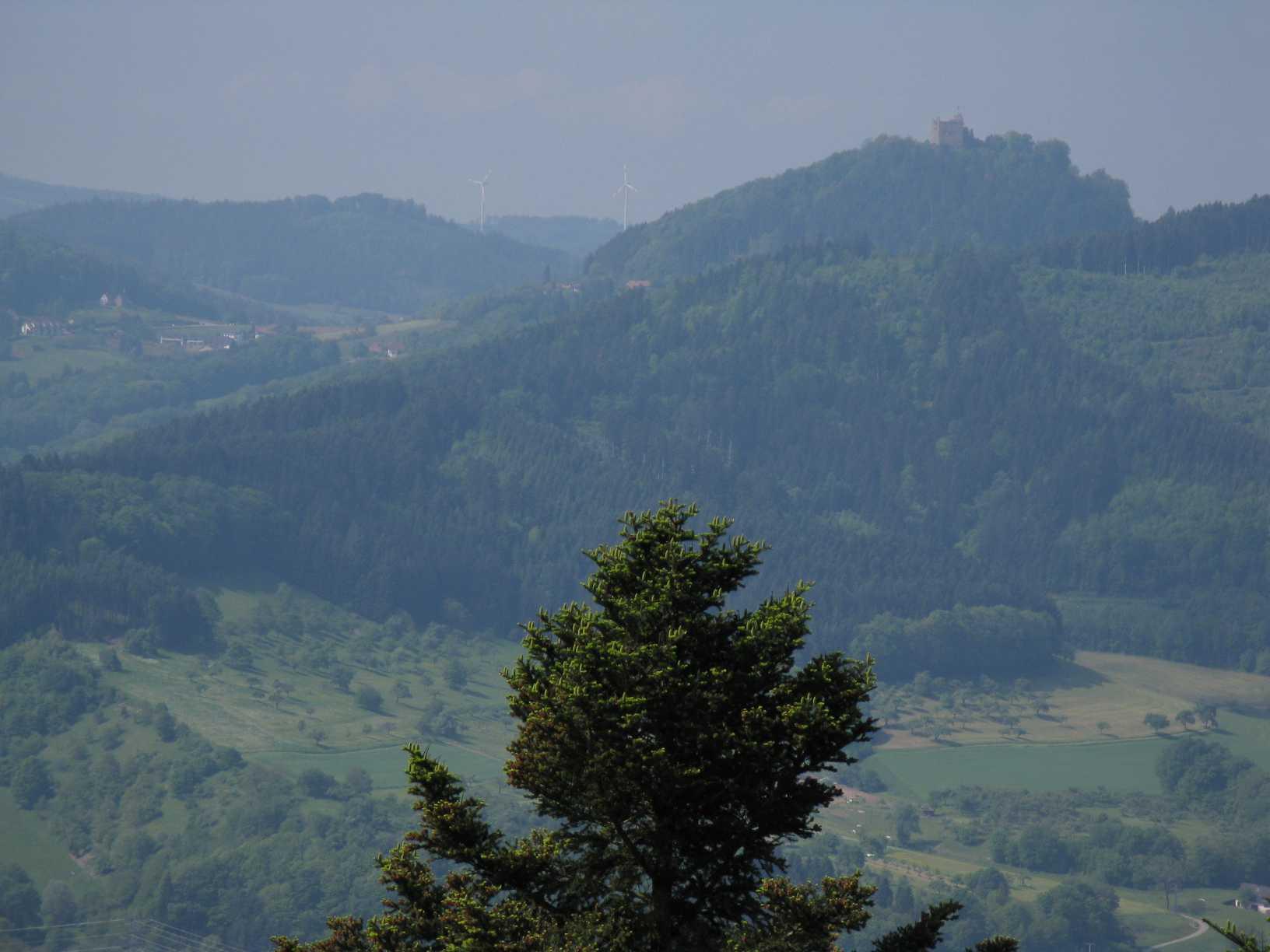 maiwanderung_2011-002