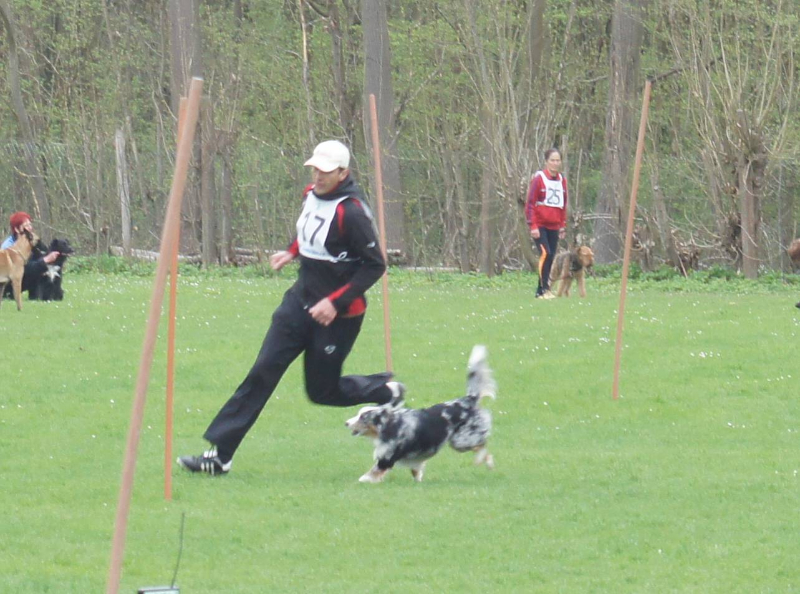 ths-turnier-schutterwald-2013-062