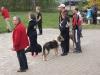 ths-turnier-schutterwald-2013-098